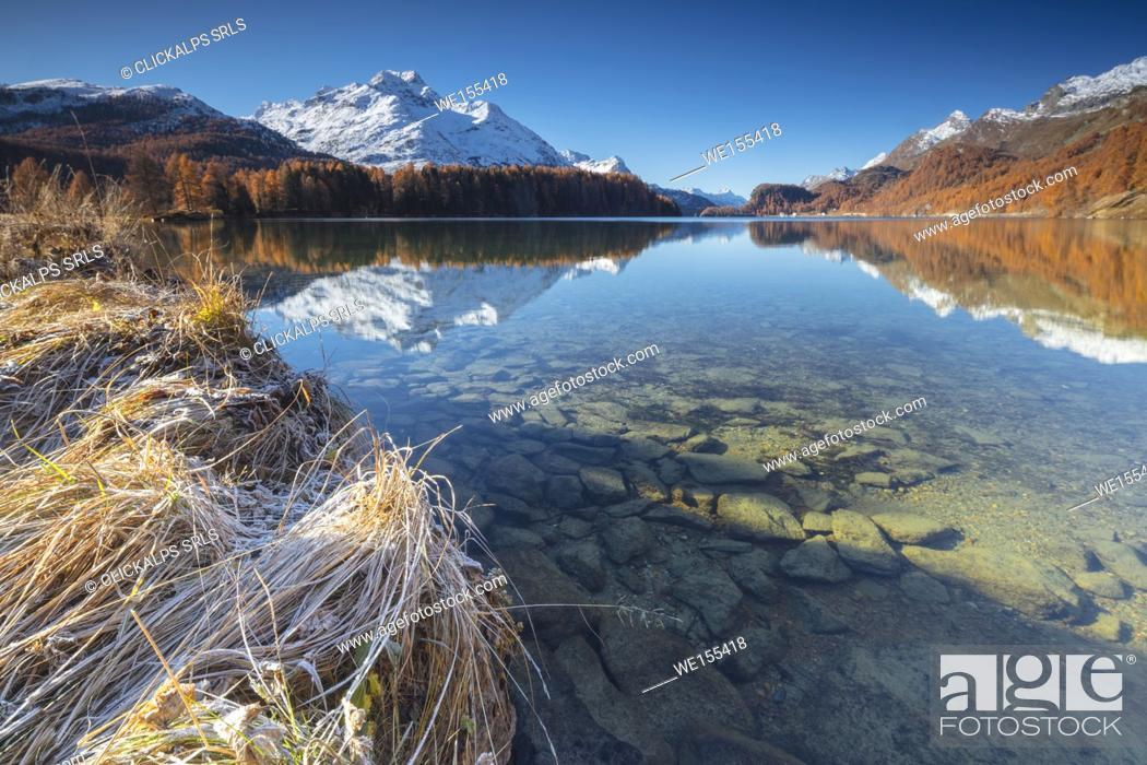 Stock Photo: The snowy peaks and colorful woods are reflected in Lake Champfèr St. Moritz Canton of Graubünden Engadine Switzerland Europe.