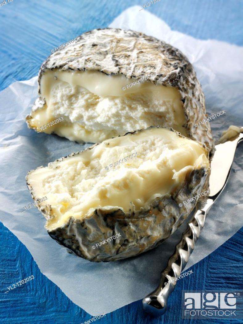 Stock Photo: Farm goats cheese from Normandy French traditional regonal Cheeses.