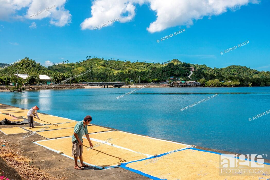 Imagen: Philippines. Leyte. Baybay. Spreading rice out to dry beside the sea.