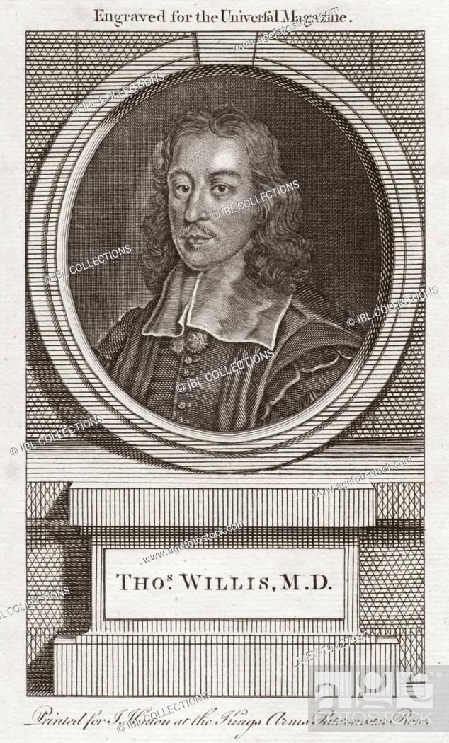 Thomas Willis 1621 1675 English Doctor Who Played An Important