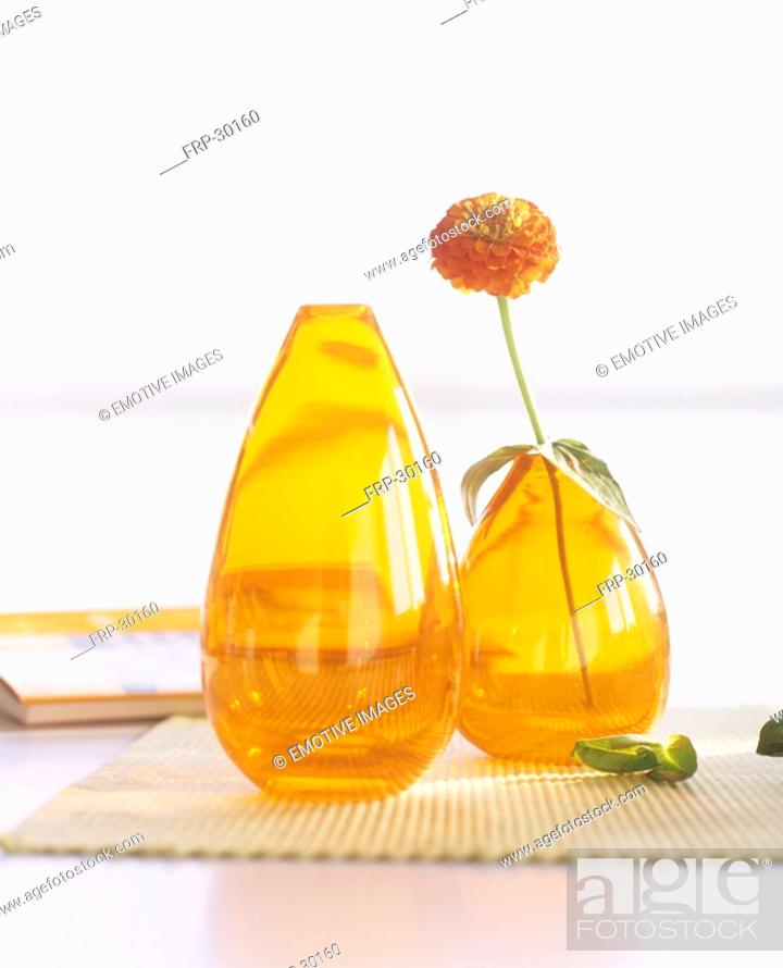Stock Photo: Zinnia in a yellow glass vase.