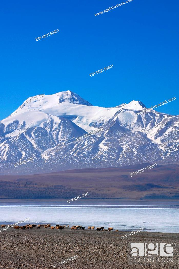 Stock Photo: Landscape in Tibet.