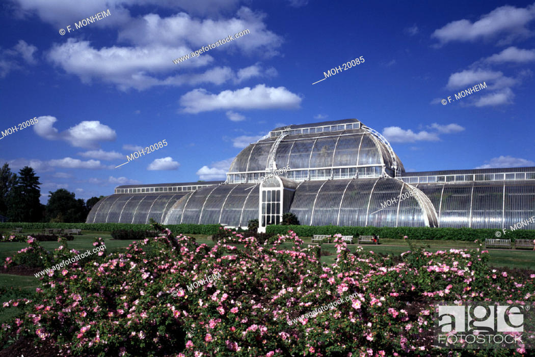 Stock Photo: London, Kew Gardens/Palmenhaus.