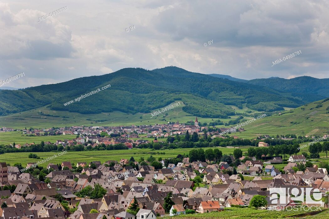 Stock Photo: View at Kientzheim and Kaysersberg, Alsace.