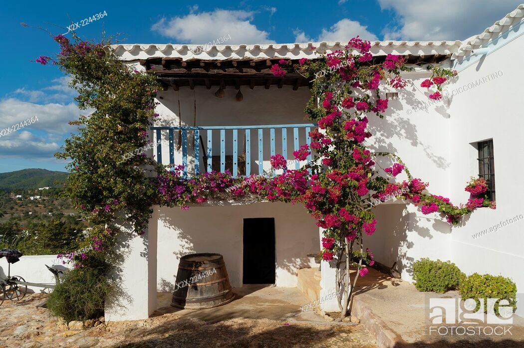 Stock Photo: Spain, Balearic Islands, Ibiza, Traditional Payesa house.