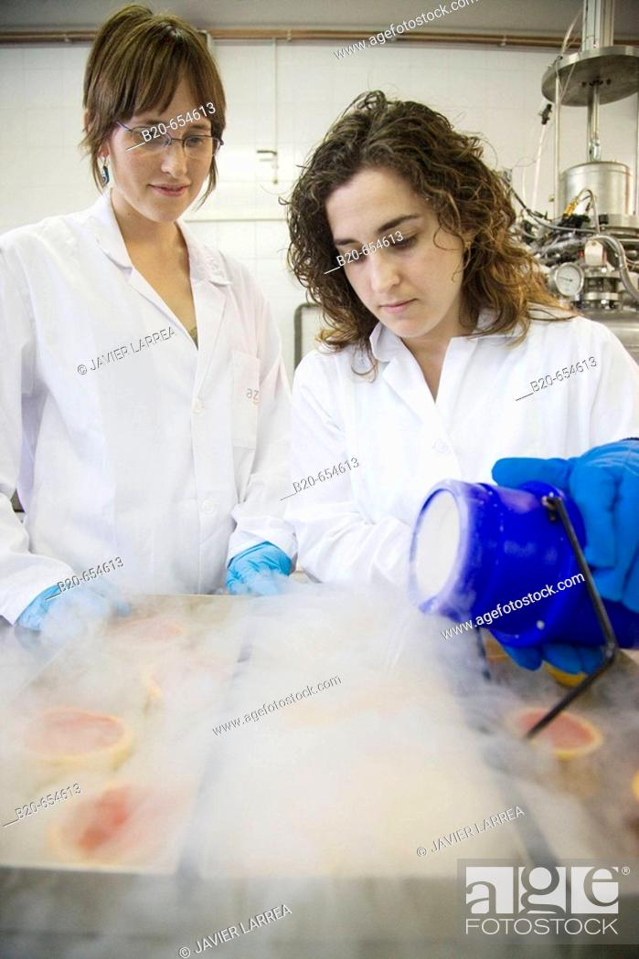 Stock Photo: Pilot plant. Experimenting with liquid nitrogen in food. Oranges. Laboratories. AZTI-Tecnalia. Technological Centre specialised in Marine and Food Research.