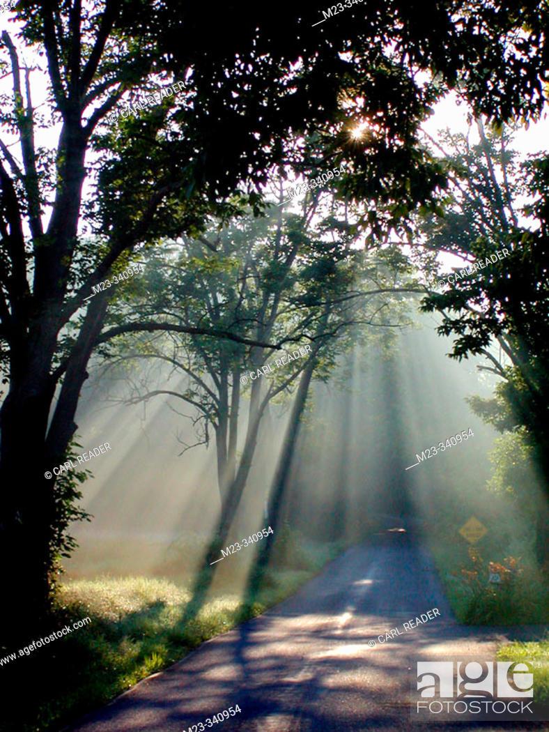 Stock Photo: Sun fingers: the summer sun reaches down for a Pennsylvania road, USA.