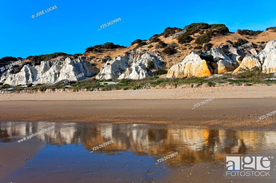 Stock Photo: Natural Monument Cliffs of the Asperillo, Almonte, Huelva province, Region of Andalusia, Spain, Europe.