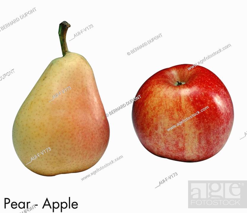 Stock Photo: Pear - Apple.