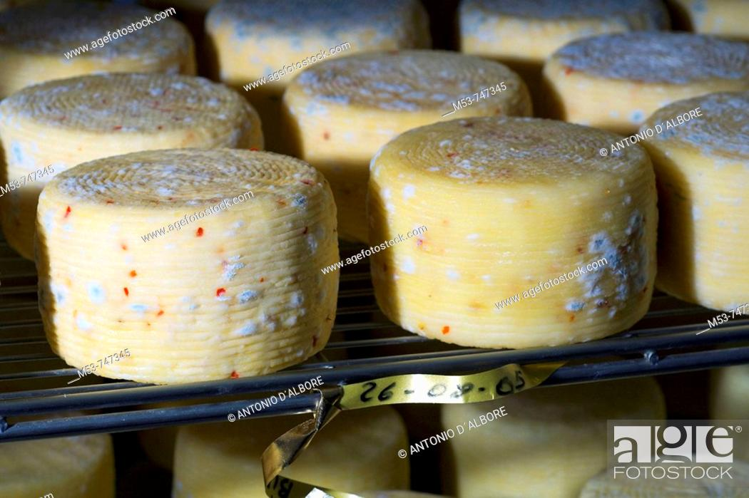 Stock Photo: Chilli pepper flavoured cow cheese season in the seasoning room, province of Caserta, Campania, Italy.