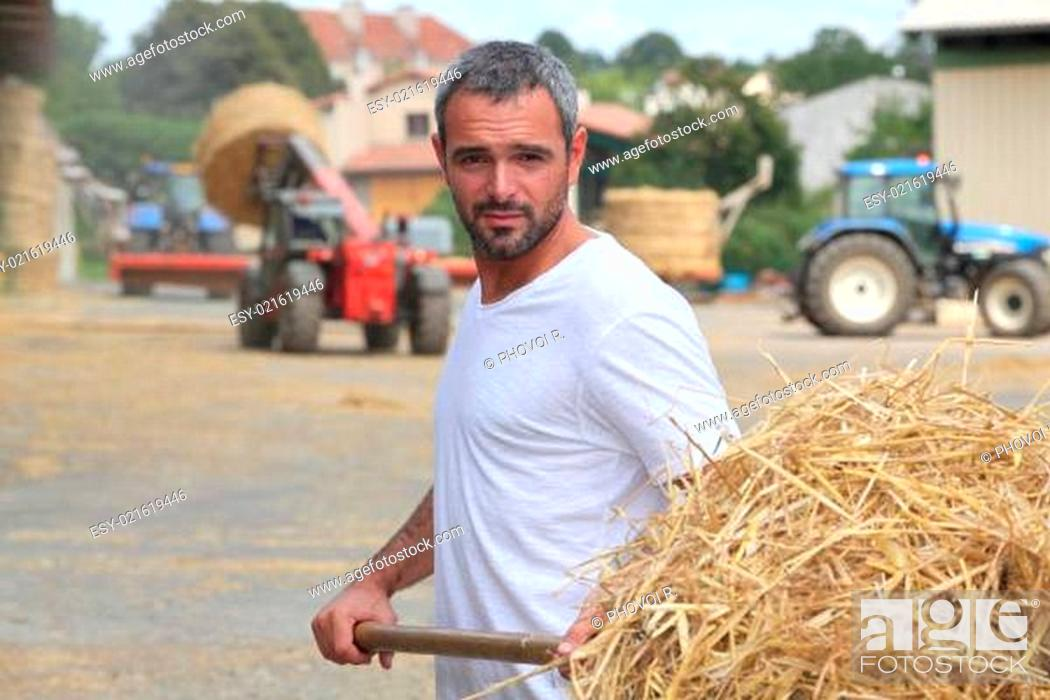 Stock Photo: a farmer taking straw with a fork.