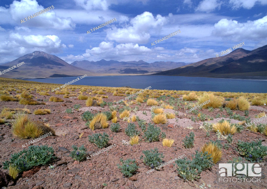 Stock Photo: Chile, El Norte Grande, arid landscape with mountains and small lake.