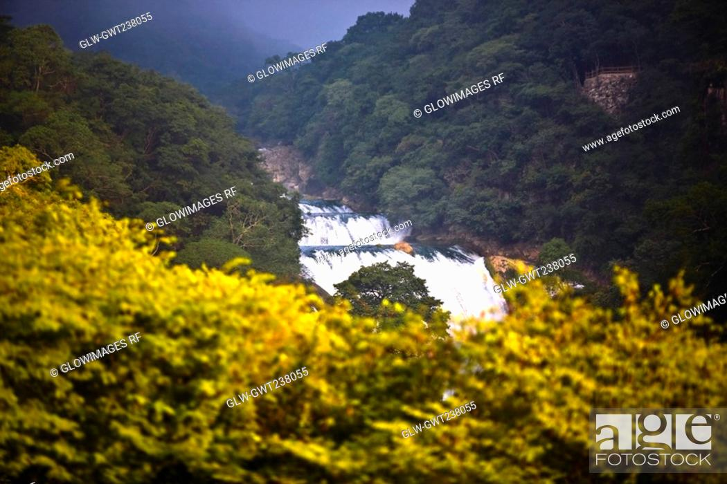 Stock Photo: Waterfall in a forest, Waterfalls of the Monkeys, City Valleys, San Luis Potosi, Mexico.