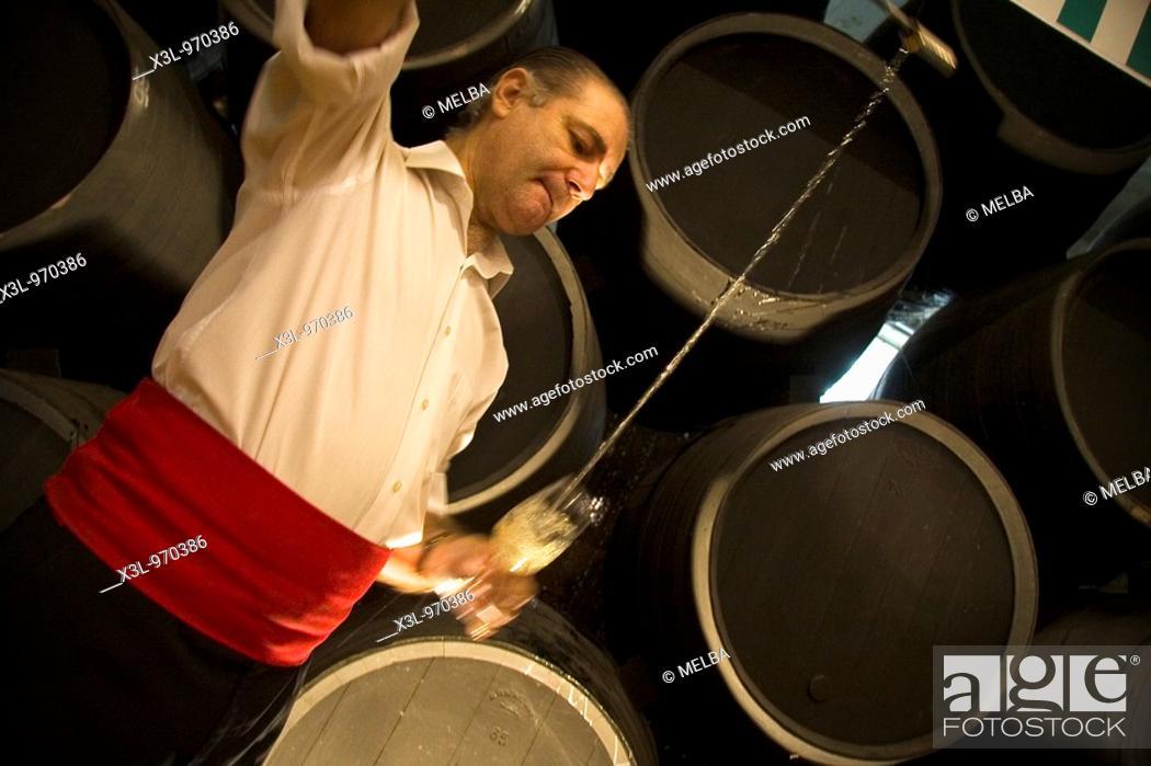 Stock Photo: Pouring sherry into glasses from a venencia, Jerez de la frontera  Cadiz, Andalucia, Spain.