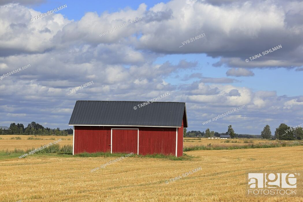 Stock Photo: Red wooden barn in stubble wheat field in early autumn with blue sky and clouds background in the open agricultural landscape of Ostrobothnia, Finland.
