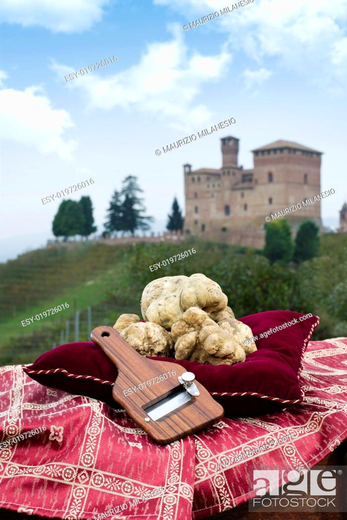 Stock Photo: Still Life the White Truffles from Piedmont and size truffles, with views over the vineyards and the castle of Grinzane Cavour.