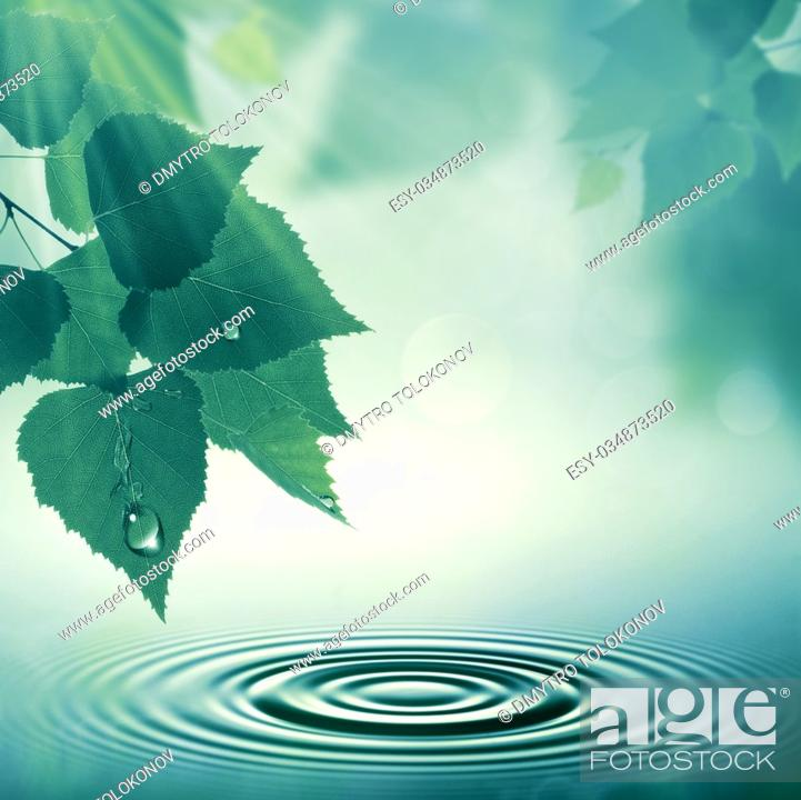 Stock Photo: Early morning, abstract summer landscape with green foliage.