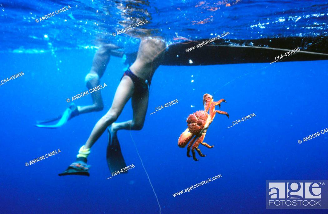 Stock Photo: Lobster fishing in the Caribbean Sea. Kuna Yala, San Blas, Panama.