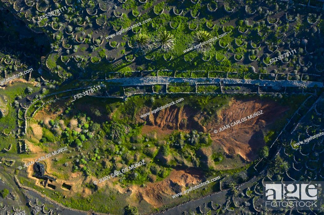 Imagen: Vineyard, Rural landscape, Tiagua, Lanzarote Island, Unesco Biosphere Reserve, Canary Islands, Spain, Europe.