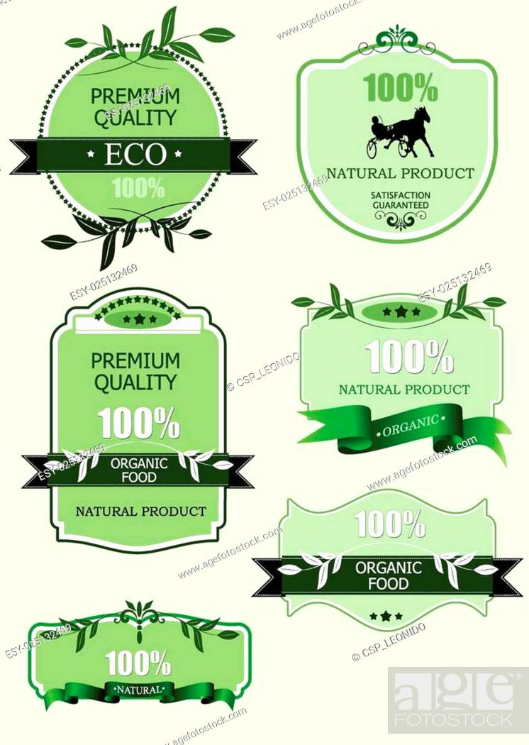 Stock Vector: Eco green labels with retro vintage.