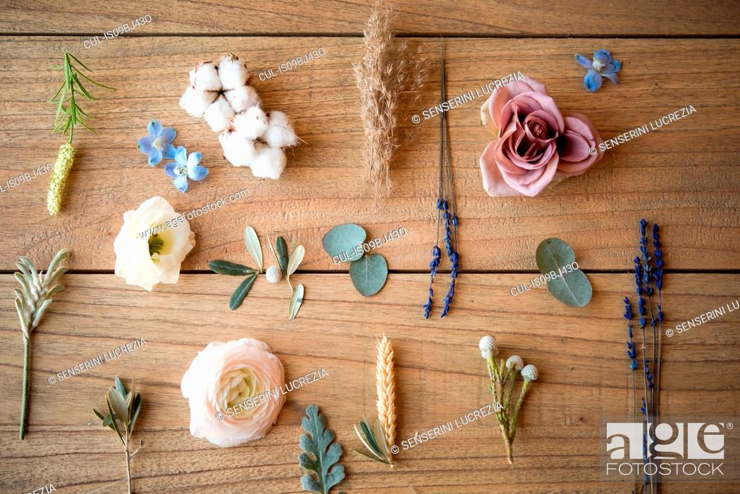 Stock Photo: Still life of pastel coloured flower heads, flower stems and leaves on wood, overhead view.