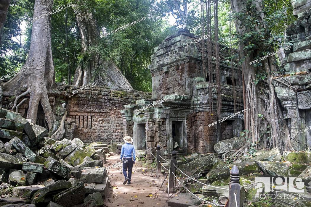 Photo de stock: Ta Prohm temple, Angkor Archaeological Park, Siem Reap, Cambodia.