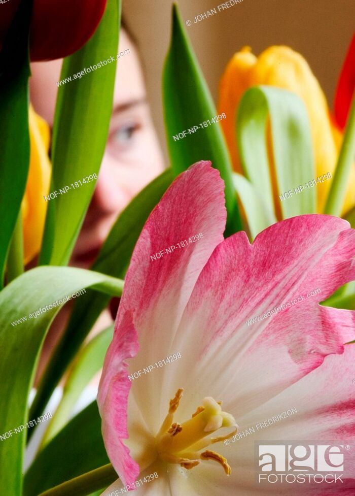 Stock Photo: Close-up of a girl looking through flowers.