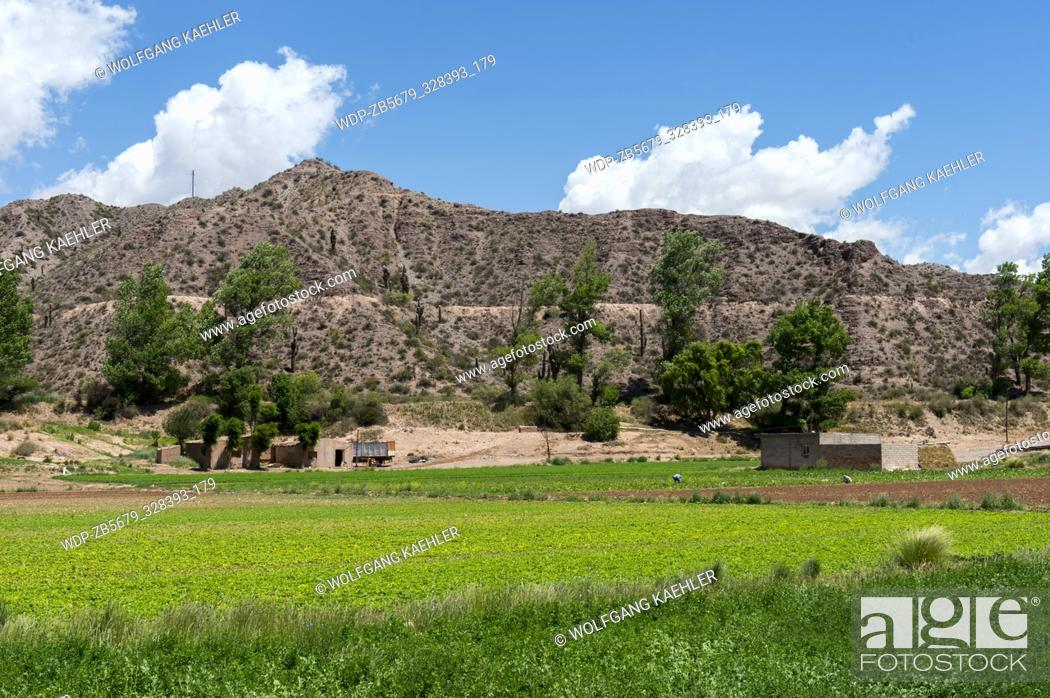 Stock Photo: View of agricultural fields near Tilcara in the valley of Quebrada de Humahuaca (UNESCO World Heritage Site) in the Andes Mountains, Jujuy Province, Argentina.