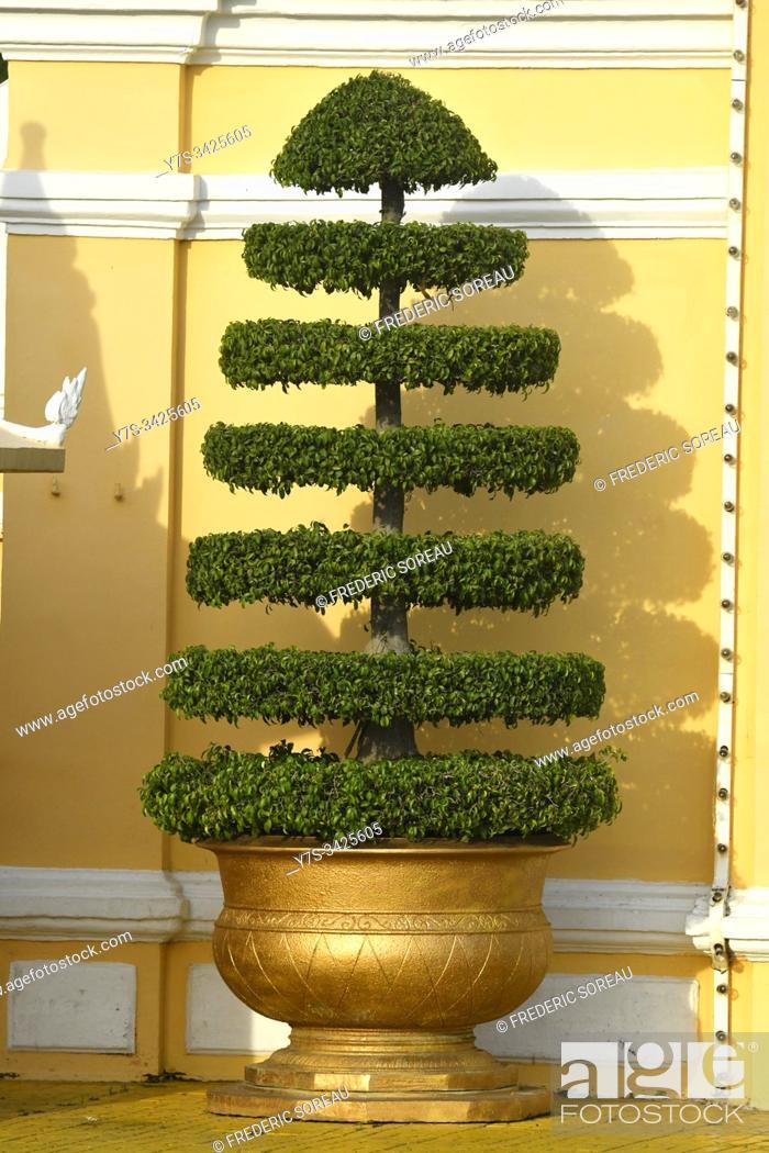 Stock Photo: A tree at the entrance of royal palace, Phnom Penh, Cambodia, South Esat Asia.