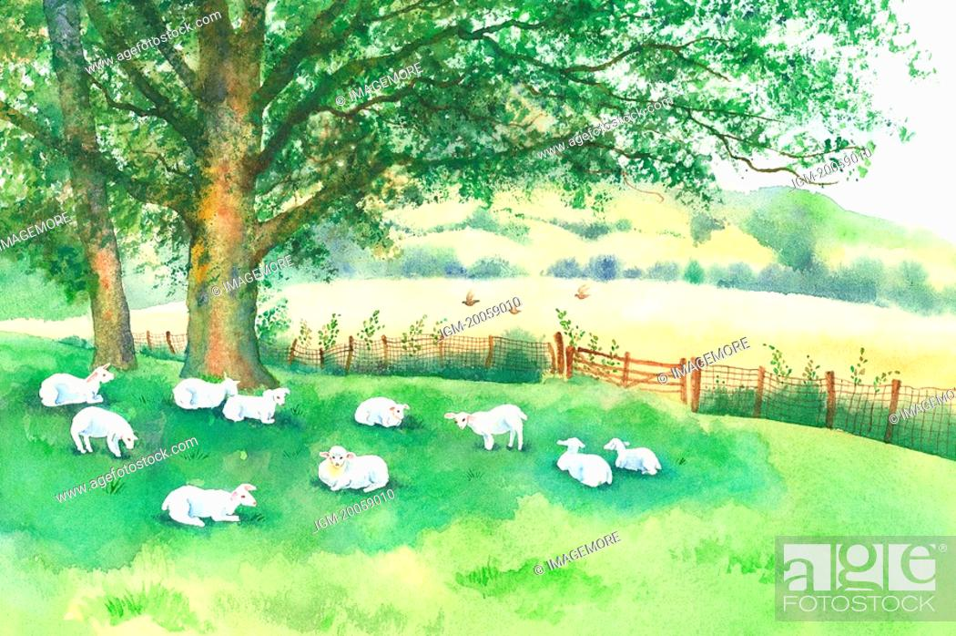 Stock Photo: Animal, Watercolor painting of goats resting on the lawn.
