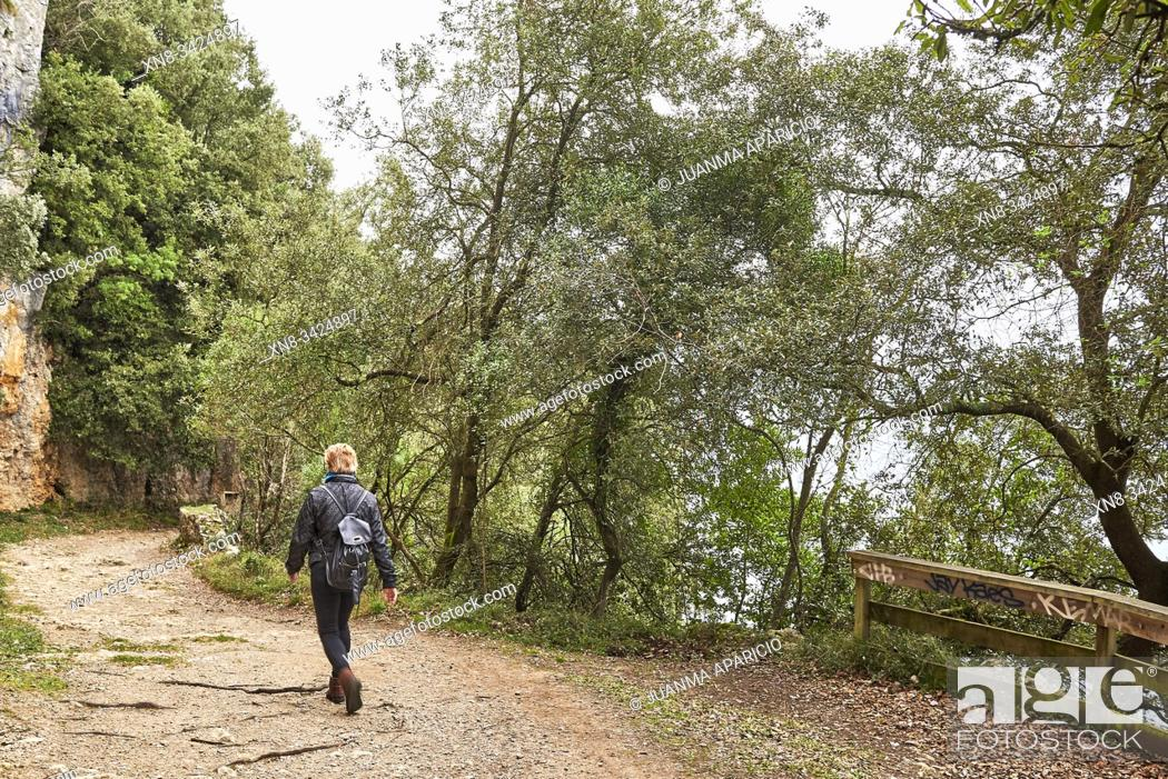 Stock Photo: Medium age woman walking by the forest, Santoña, Cantabria, Spain, Europe.