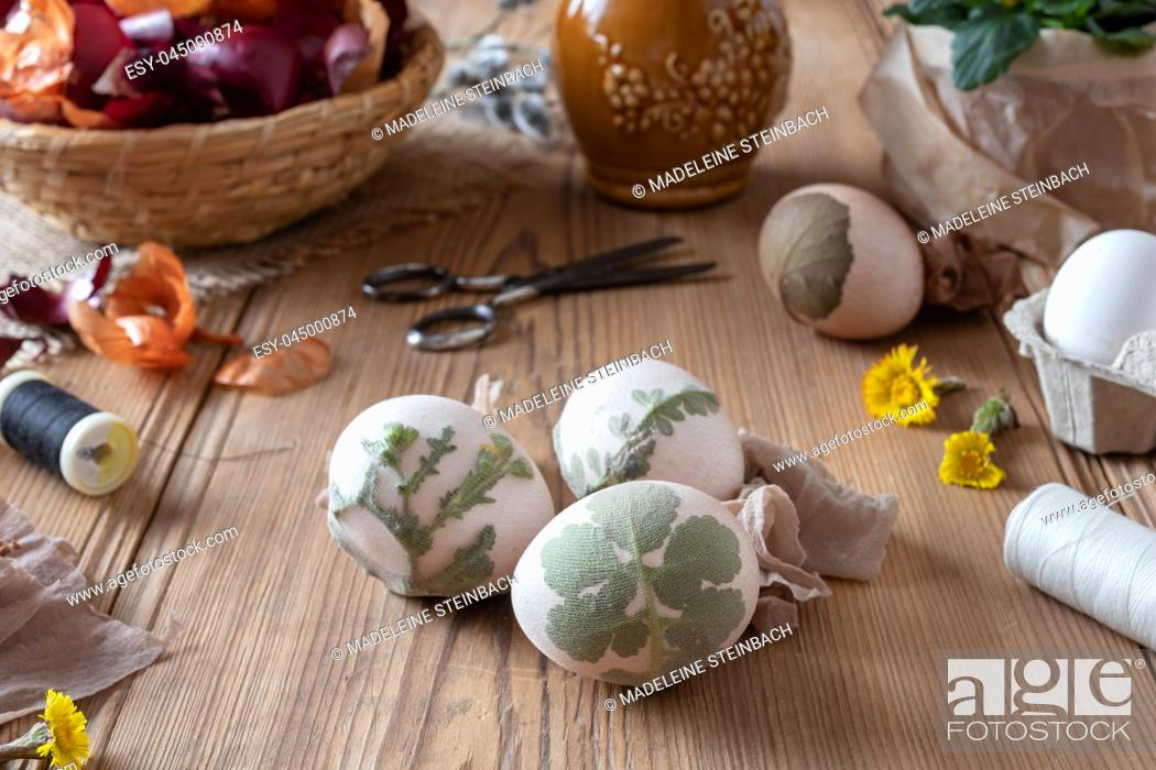 Stock Photo: Preparation of Easter eggs for dying with onion peels with a pattern of fresh herbs.