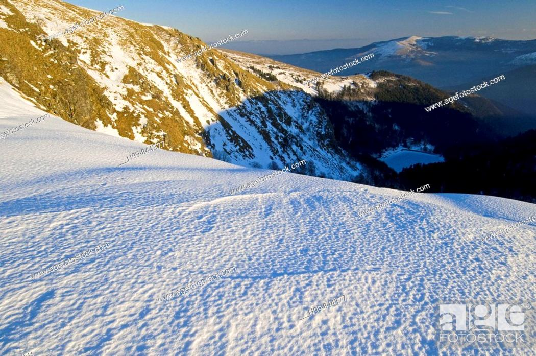 Stock Photo: Hohneck, windswept ridge, iced snow, Vosges, lower mountain ranges, Alsace, France.