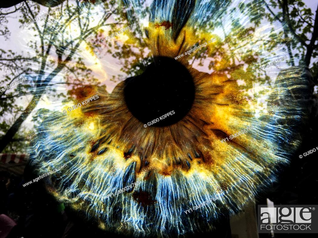 Stock Photo: Berlin, Germany, Eyes Iris and Pupil, photographed on Macro and printed on a reflecting surface, thus showing what the eye sees as well.