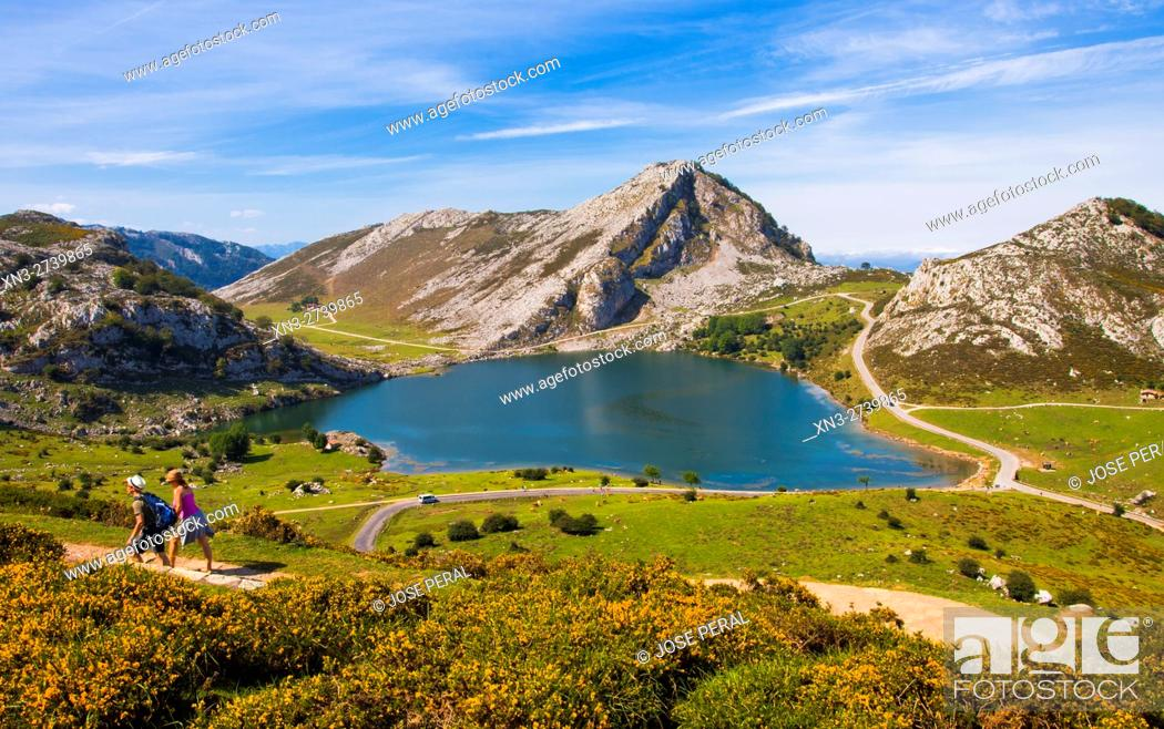 Stock Photo: Enol Lake, The Lakes of Covadonga, Cangas de Onis Council, Peaks of Europe, Picos de Europa National Park, Asturias, Spain, Europe.
