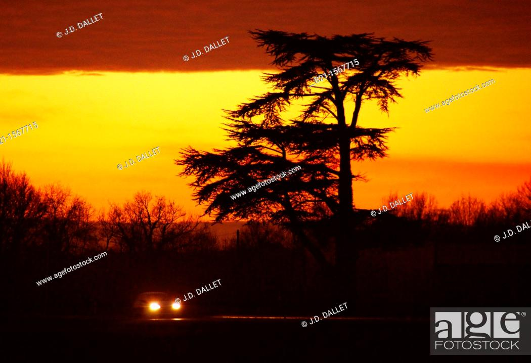 Stock Photo: Traffic at sunset on N 89 highway by Montpon, Dordogne, Aquitaine, France.