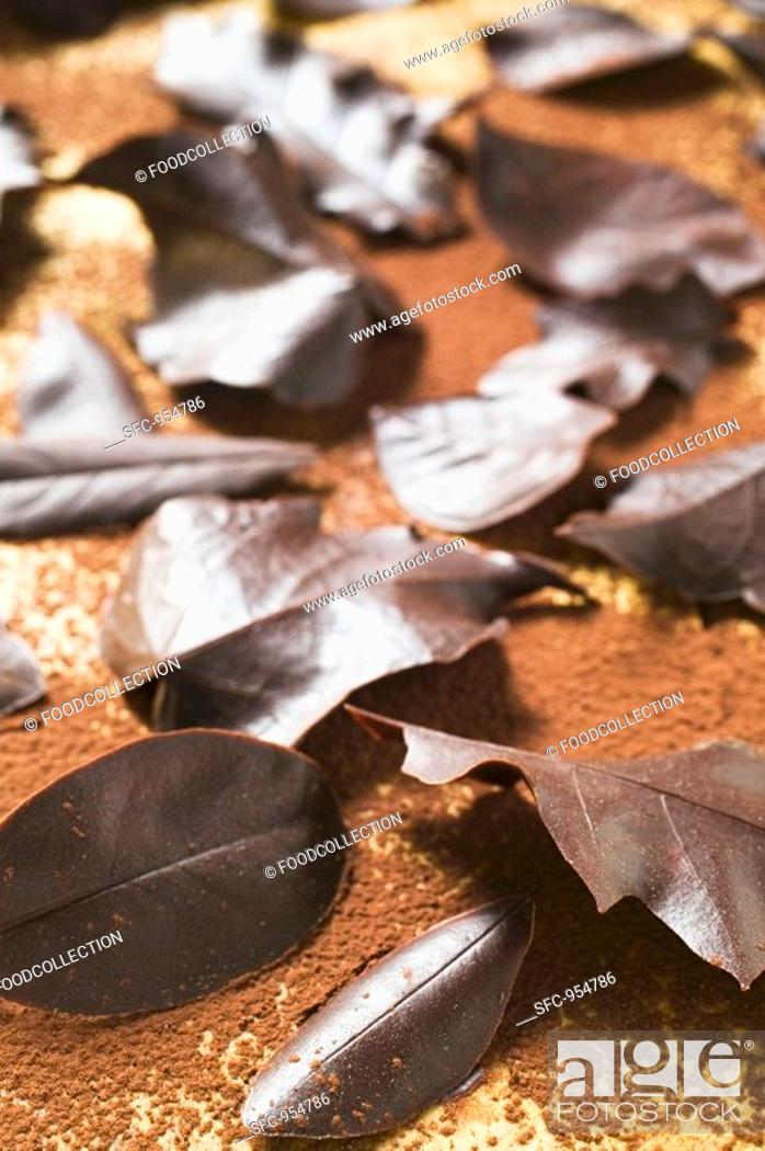 Stock Photo: Several different chocolate leaves on cocoa powder.