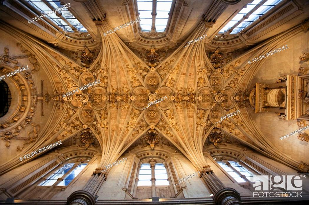 Stock Photo: Star-shaped vault in the church vestry of the old monastery and hospital of San Marcos, Leon. Castilla-Leon, Spain.