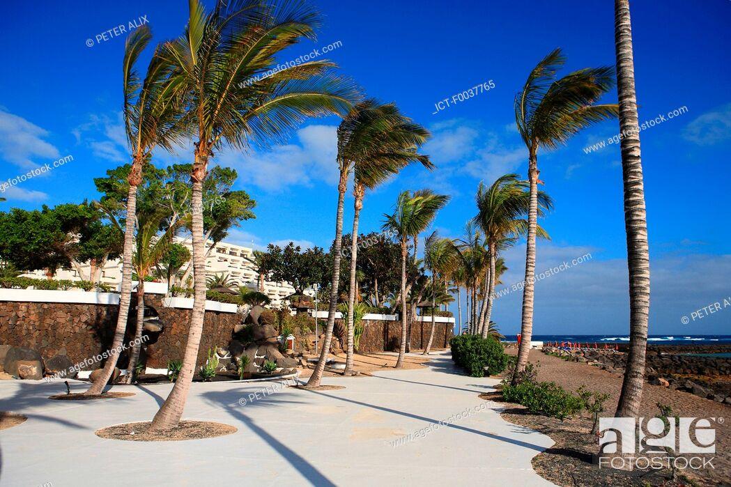Stock Photo: Spain, Canary islands, Lanzarote, Costa Teguise.