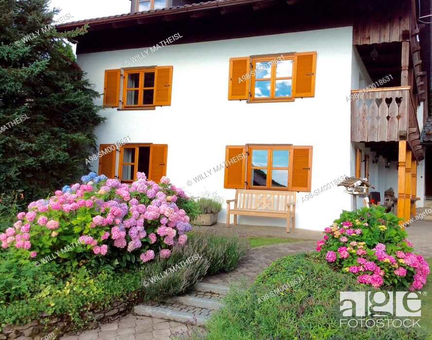 Stock Photo: Garden with hydrangea plants in front of facade of an old traditional Bavarian farmhouse with wooden windows and shutters, Bavaria, Germany, Europe.
