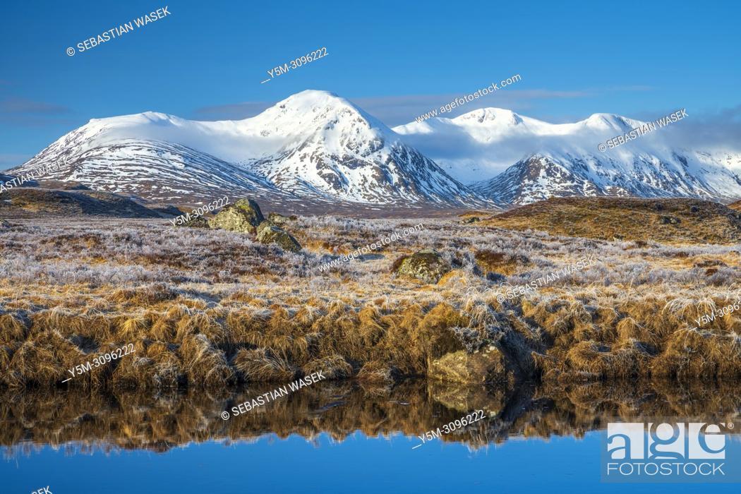 Stock Photo: Rannoch Moor, Argyll and Bute, Scotland, United Kingdom, Europe.