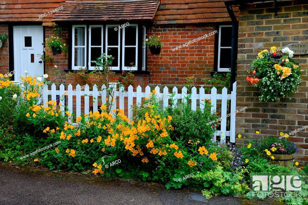 Haus Mit Blumenschmuck Inkalilien Vor Zaun Inkalilie Alstroemeria