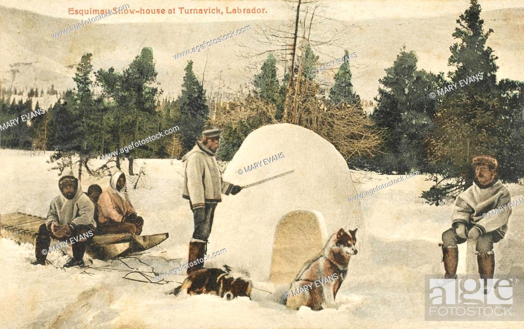 Stock Photo: Eskimo snow-house at Turnavick, Labrador. A small shelter is prepared for the team of husky dogs.