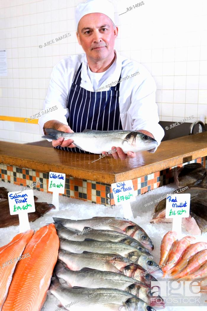 Stock Photo: Fishmonger behind counter in shop, holding fish, portrait.