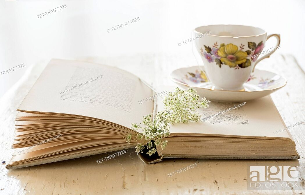 Stock Photo: Studio shot of teacup and book with flower.