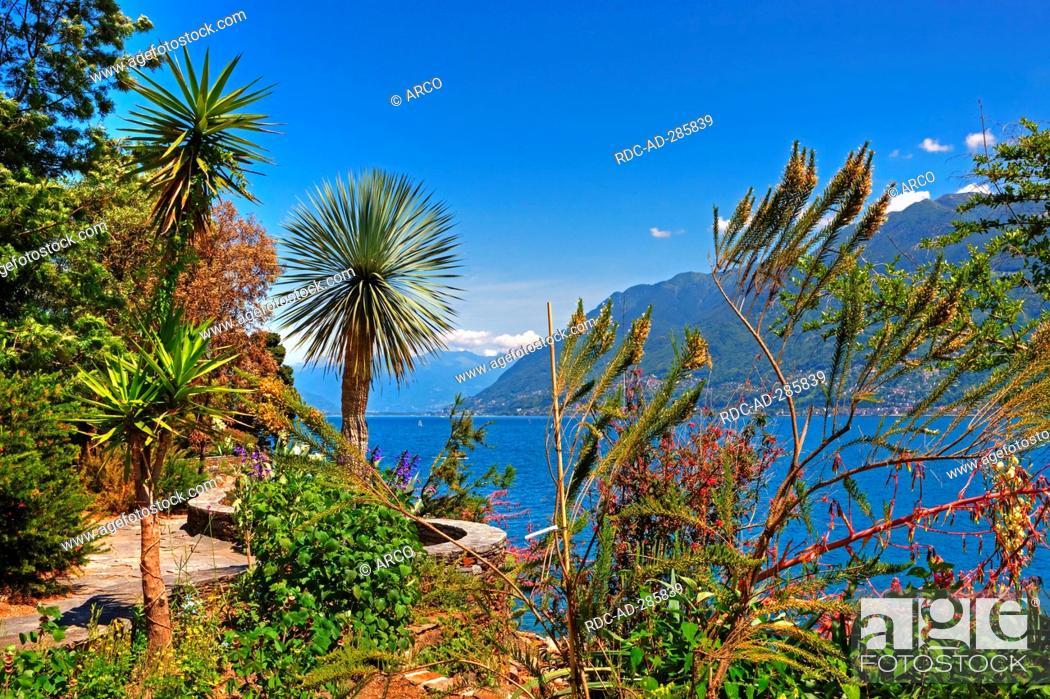 Stock Photo: Botanical garden, Isole di Brissago, at Lago Maggiore, Ticino, Switzerland.