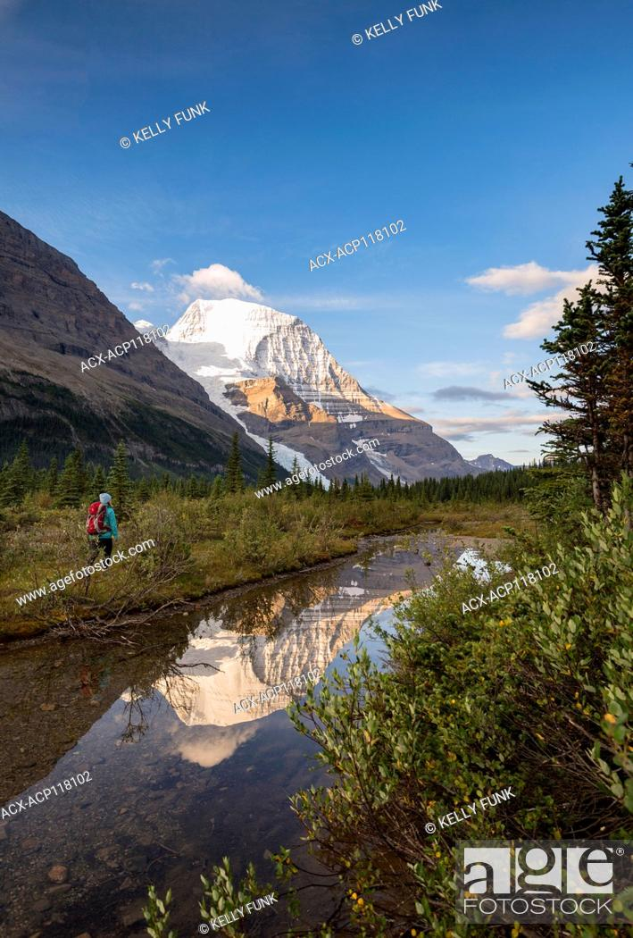 Imagen: A young woman hikes the Berg lake trail with Mt. Robson's reflection and Rearguard mountain in the foreground, Mt. Robson Provincial Park, British Columbia.