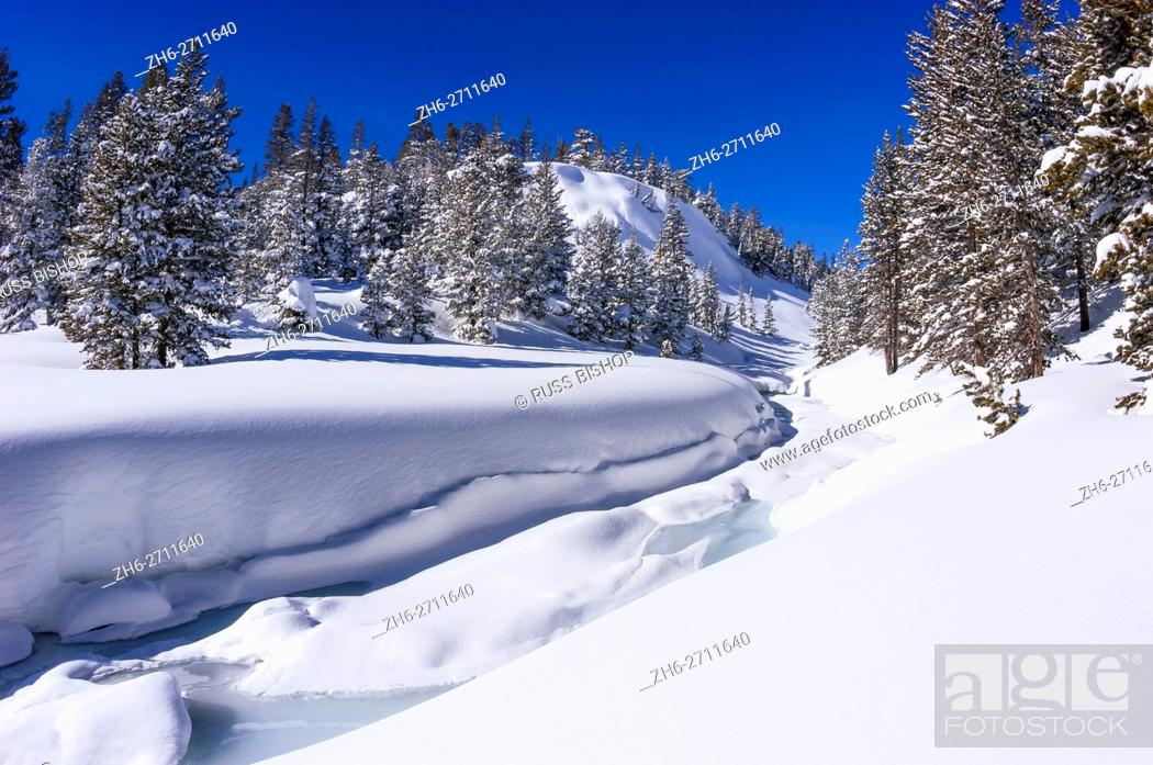 Stock Photo: Fresh snow on Lee Vining Creek in winter, Inyo National Forest, Sierra Nevada Mountains, California USA.