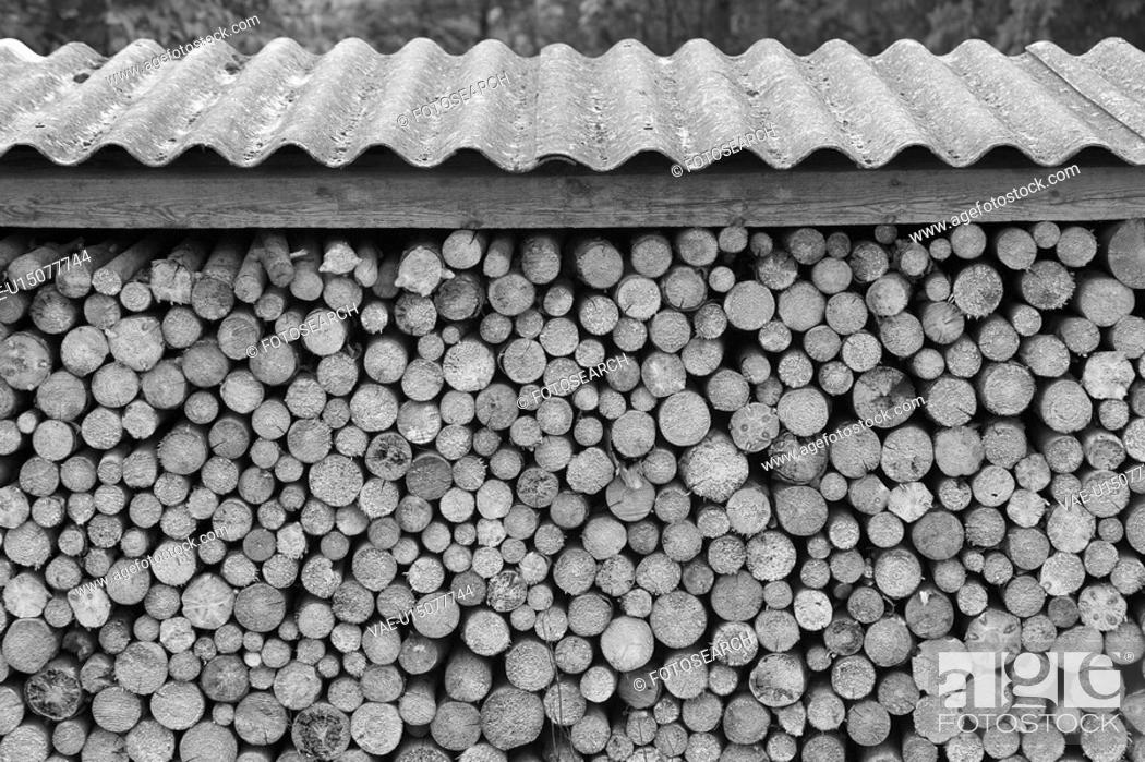 Stock Photo: Black And White, Close-Up, Day, Firewood, Large Group Of Objects.