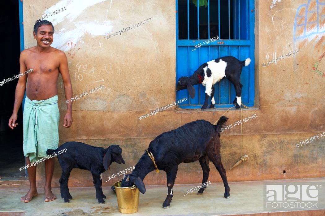 Stock Photo: India, West Bengal, village around Jangipur working on silk weaving for sari production.